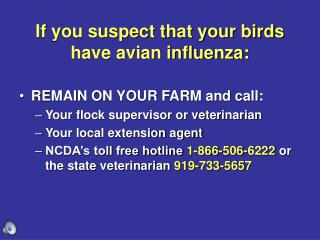If you suspect that your birds have avian influenza: