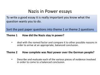 Nazis in Power essays