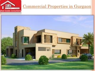 Commercial Properties in Noida