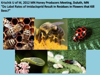 Krischik U of M, 2012 MN Honey Producers Meeting, Duluth, MN  Do Label Rates of Imidacloprid Result in Residues in Flowe