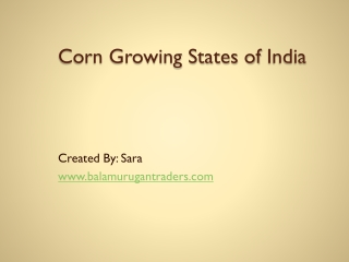 Corn Growing States of India