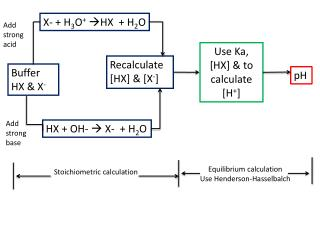 X-  H3O HX   H2O