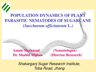 POPULATION DYNAMICS OF PLANT PARASITIC NEMATODES OF SUGARCANE Saccharum officinarum L.