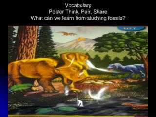 Vocabulary Poster Think, Pair, Share What can we learn from studying fossils