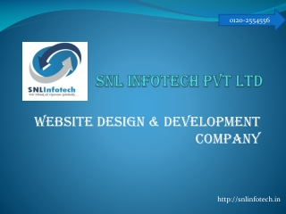 Snlinfotech pvt ltd noida |snlinfotech private limited Websi