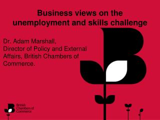 Business views on the unemployment and skills challenge
