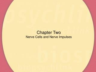 Chapter Two Nerve Cells and Nerve Impulses