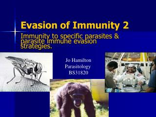 Evasion of Immunity 2