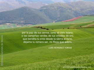 Por la paz de tus cerros, junto al cielo lejano, o las campi as verdes de tus vi edos de oro, que bendita t  eres desde