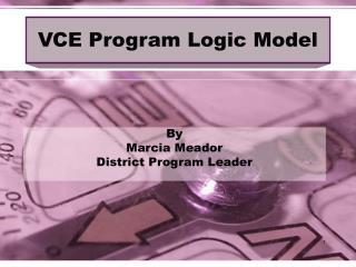 VCE Program Logic Model