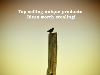 Top selling unique products – Ideas worth stealing!
