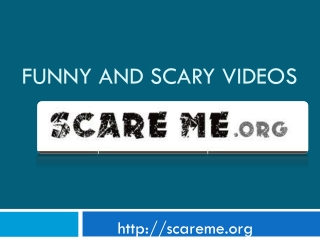 Funny and scary videos