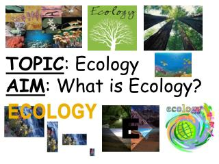 TOPIC: Ecology AIM: What is Ecology