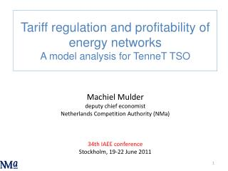 Machiel Mulder deputy chief economist Netherlands Competition Authority NMa   34th IAEE conference Stockholm, 19-22 June