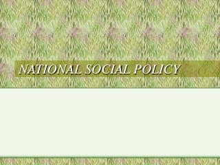 NATIONAL SOCIAL POLICY