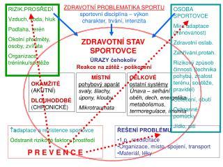 ZDRAVOTN  PROBLEMATIKA SPORTU sportovn  discipl na   v kon        charakter, trv n , intenzita