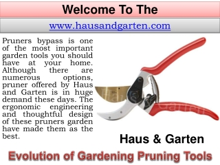Quality Gardening Tools - Tree Trimming Equipment - Wood Cut