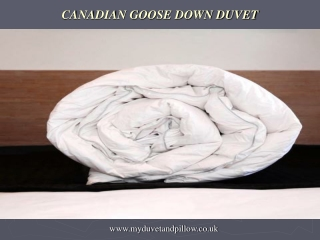 Canadian goose down Duvet