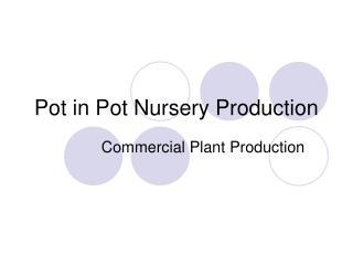 Pot in Pot Nursery Production