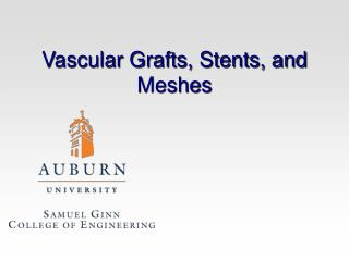 Vascular Grafts, Stents, and Meshes