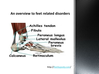 An overview to feet related disorders