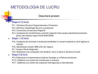 METODOLOGIA DE LUCRU