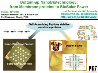 Nano-Bio-PhotoVoltaic    Solid State Devices