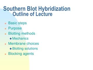 Southern Blot Hybridization  Outline of Lecture