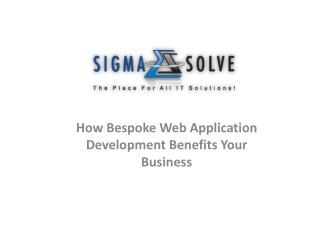 How Bespoke Web Application Development Benefits Your Busine