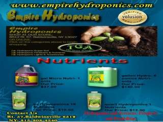 Hydroponics and syrracus