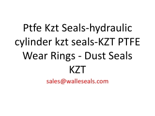 Ptfe Kzt Seals-hydraulic cylinder kzt seals-KZT PTFE Wear Ri
