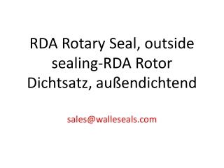 RDI Rotor Dichtsatz innendichtend-RDI Rotary Seal inside sea