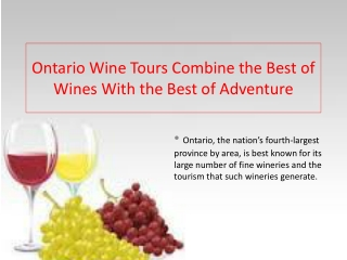 Ontario Wine Tours Combine the Best of Wines With the Best of Adventure