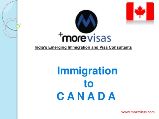 Canadian Business Visa Process | MoreVisas