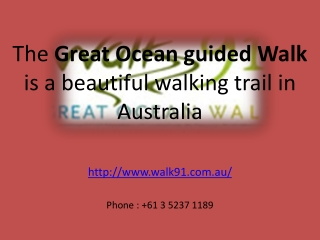 The Great Ocean guided Walk is a beautiful walking tour.