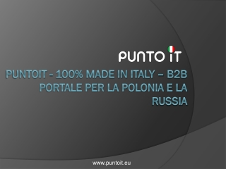 PuntoIT - 100% Made In Italy B2B Portale