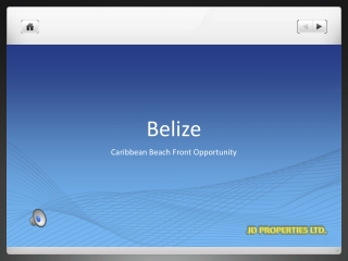 Caribbean Beachfront Opportunity-Belize
