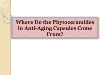 Where Do the Phytoceramides in Anti-Aging Capsules Come From