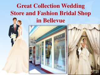 Great Collection Wedding Store and Fashion Bridal Shop in Be