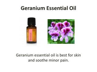 Get Geranium Essential Oil Today