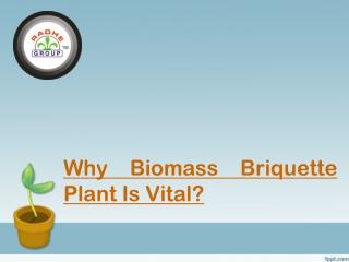 Why Biomass Briquette Plant Is Vital?