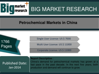 Petrochemical Markets in China