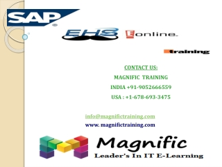 sap ehs online training in usa
