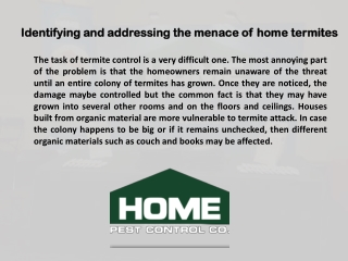 Identifying and addressing the menace of home termites