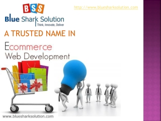 Blue Shark Solution � A trusted name in Ecommerce web develo