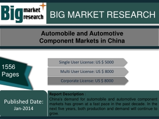 Automobile and Automotive Component Markets in China