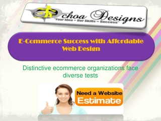 E-Commerce Success with Affordable Web Design