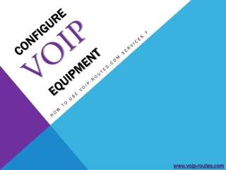 Configure VoIP Equipment at www.voip-routes.com