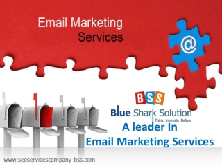 Blue Shark Solution – A leader in email marketing services