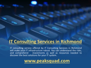 IT Consulting Services in Richmond VA